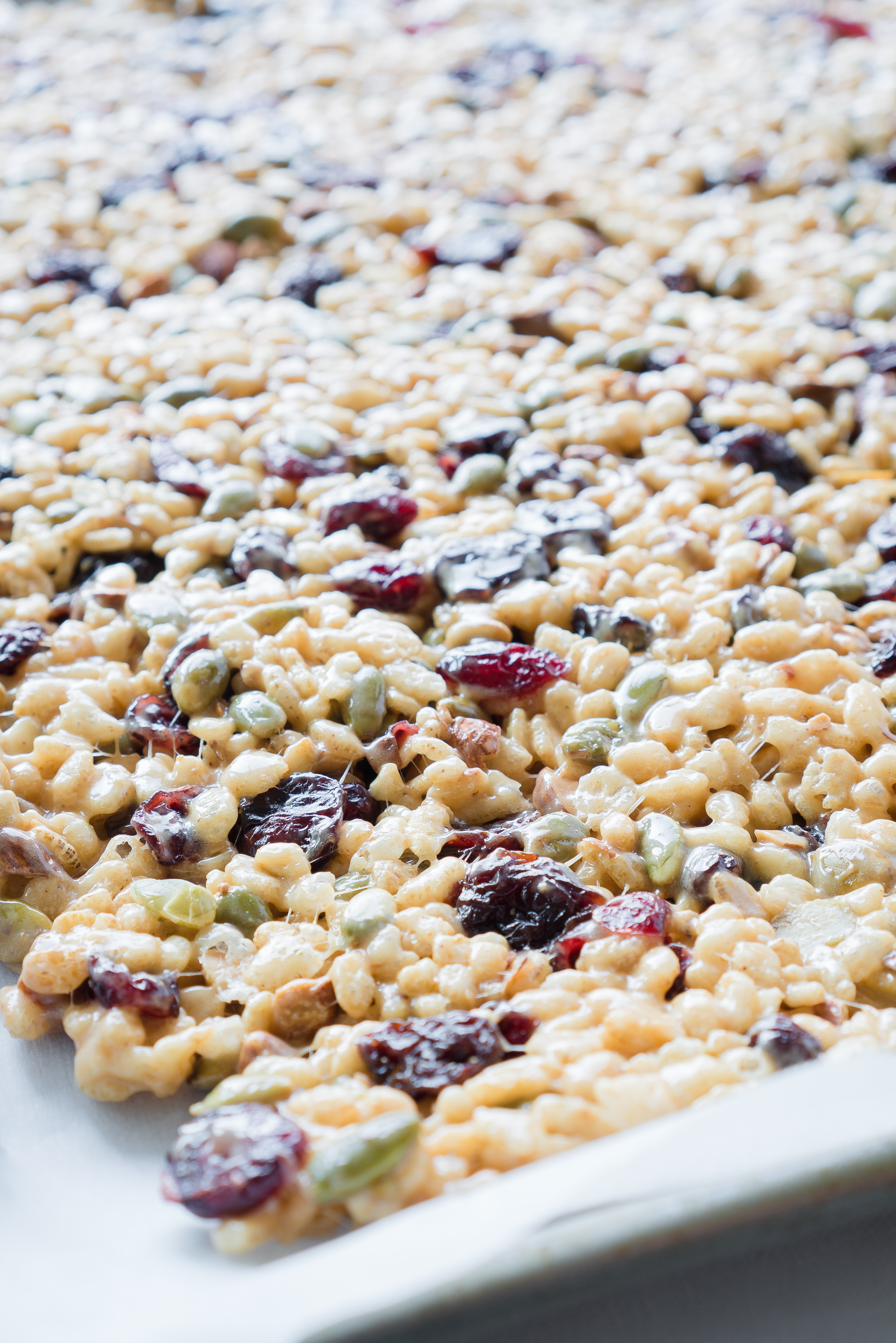 Peanut Butter Trail Mix Bars – Healthy recipe for Peanut Butter Trail Mix Bars! Uses toasted almonds, pepitas, dried cranberries, tart dried cherries, brown rice cereal, creamy peanut butter, and marshmallows! We love that this no-bake recipe uses coconut oil instead of butter ♥ | freeyourfork.com