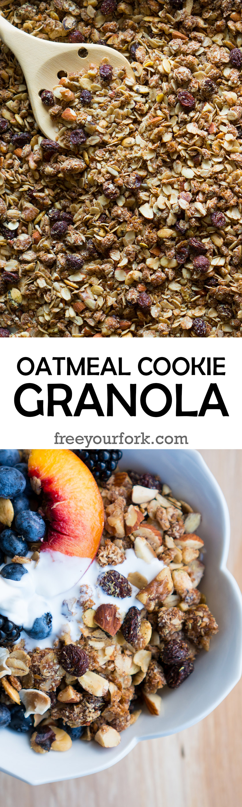Oatmeal Cookie Granola - You won't believe how easy it is to make your own gluten-free Oatmeal Cookie Granola at home! This recipe has toasted oats, almonds, walnuts, flaxseeds, coconut, cinnamon, vanilla, quinoa flakes, & more ♥| freeyourfork.com