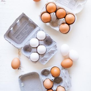 Cage-Free + Free-Range + Pasture-Raised Eggs – What They All Mean
