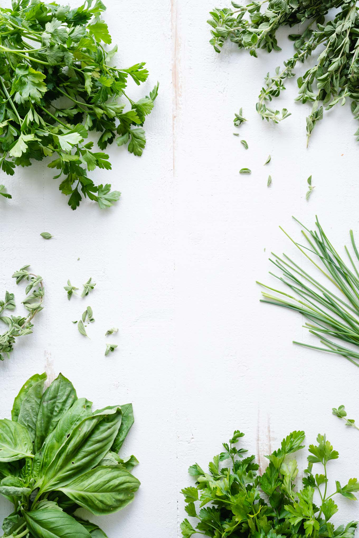 Parsley Oregano Chives Basil on White Board